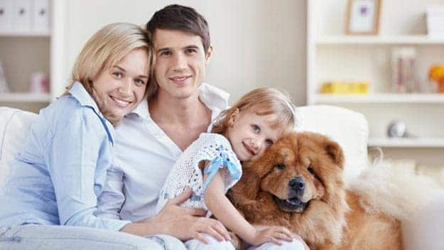 Wills & Trusts dog-young-family Direct Wills Chelmsford